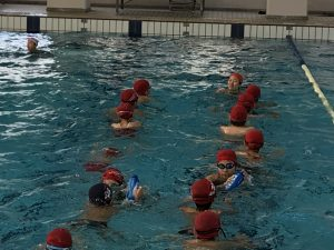 遠泳練習。