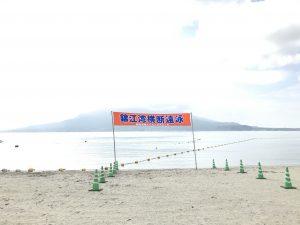 本日は第17回桜島横断遠泳の予定でした、、、